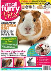 No. 31 Train Your Guinea Pig! issue No. 31 Train Your Guinea Pig!