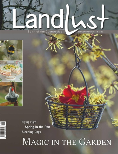 Landlust Digital Issue