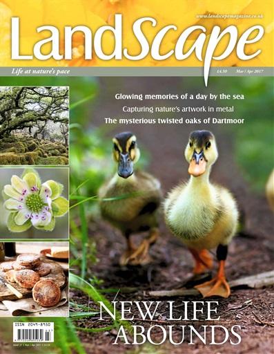 LandScape Preview