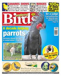 No. 5942 A Decade Helping Parrots  issue No. 5942 A Decade Helping Parrots