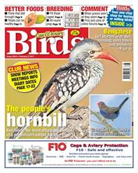 No. 5943 The People's Hornbill  issue No. 5943 The People's Hornbill