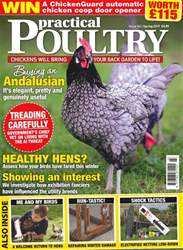 No. 161 Healthy Hens?  issue No. 161 Healthy Hens?