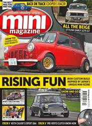 No. 262 Rising Fun  issue No. 262 Rising Fun