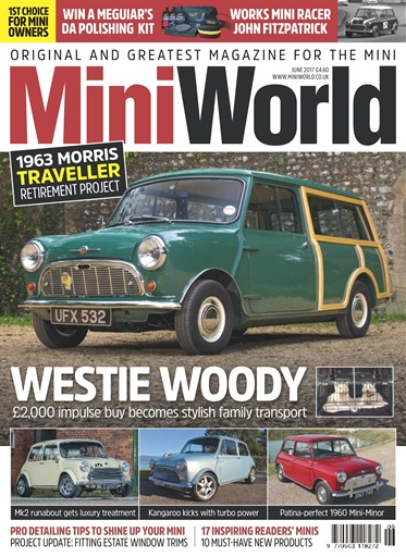 Mini World Digital Issue