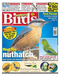 No. 5953 Meet the nuthatch issue No. 5953 Meet the nuthatch