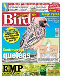 No. 5957 Controversial queleas issue No. 5957 Controversial queleas