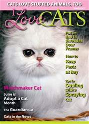 I Love Cats issue I Love Cats