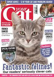 Your Cat July 2017 issue Your Cat July 2017