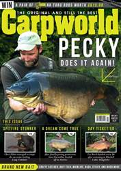 Carpworld July 2017 issue Carpworld July 2017