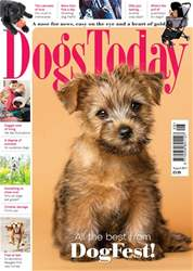 Dogs Today Magazine issue August 2017