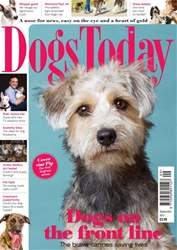 Dogs Today Magazine issue September 2017