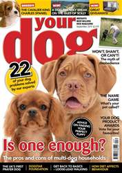 Your Dog issue Your Dog Magazine September 2017