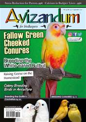 Avizandum issue September 2017