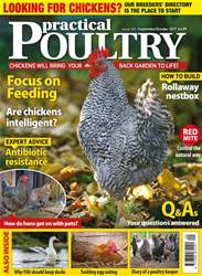 Practical Poultry issue No. 165 Focus on Feeding