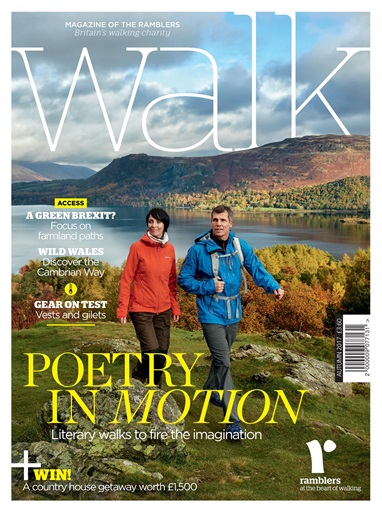 Walk Digital Issue