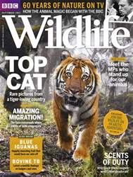 BBC Wildlife Magazine issue September 2017