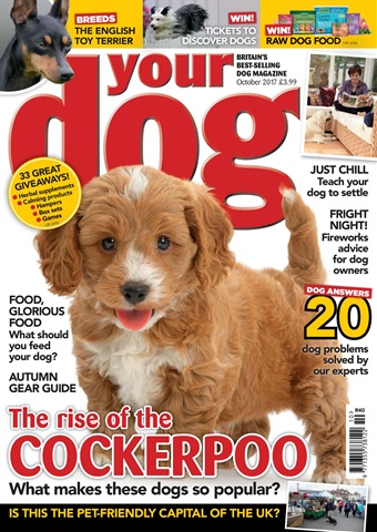 Your Dog issue Your Dog Magazine October 2017