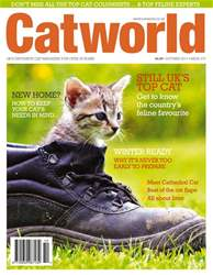 Cat World issue Issue 475