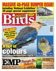 13 September 2017 issue 13 September 2017