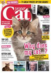 Your Cat issue Your Cat Magazine October 2017