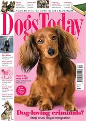 Dogs Today Magazine issue October 2017