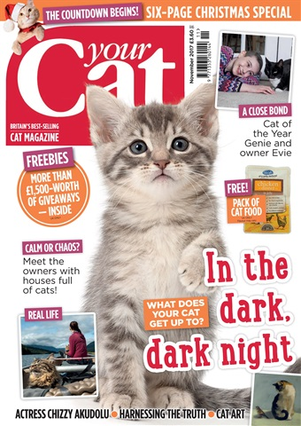 Your Cat issue Your Cat Magazine November 2017