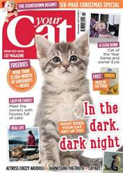 Your Cat Magazine November 2017 issue Your Cat Magazine November 2017
