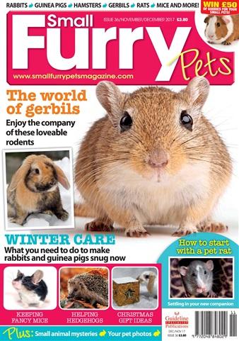 Small Furry Pets issue Nov/Dec 2017