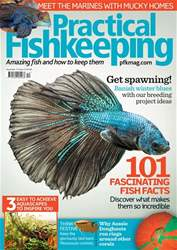Practical Fishkeeping issue December 2017