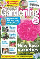 Amateur Gardening issue 28th October 2017