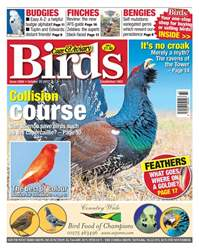 25 October 2017 issue 25 October 2017