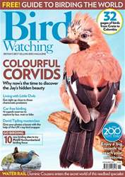 Bird Watching issue November 2017