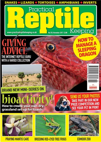 Practical Reptile Keeping issue November 2017