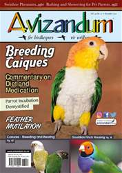 Avizandum issue December 2017