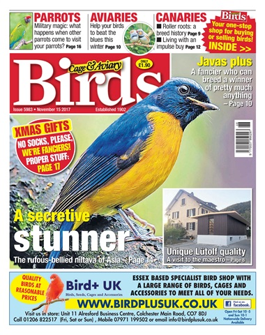 Cage & Aviary Birds issue 15 November 2017