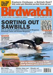 Birdwatch Magazine issue December 2017