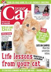 Your Cat issue Your Cat Magazine December 2017
