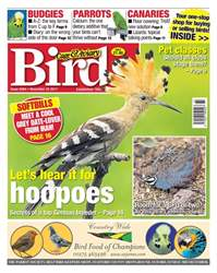 Cage & Aviary Birds issue 22 November 2017