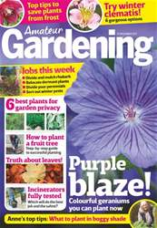 Amateur Gardening issue 25th November 2017