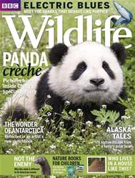 BBC Wildlife Magazine issue December 2017