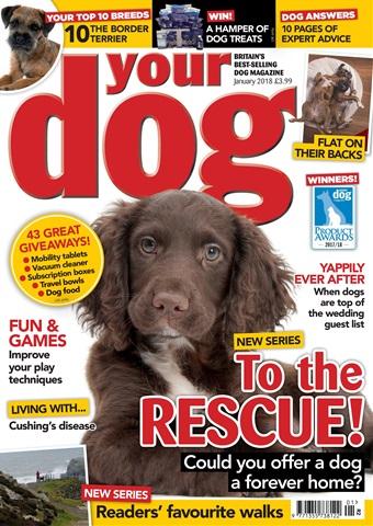 Your Dog issue Your Dog Magazine January 2018