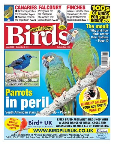 Cage & Aviary Birds issue 06 December 2017