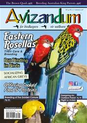 Avizandum issue January 2018