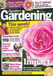 Amateur Gardening issue 16th December 2017