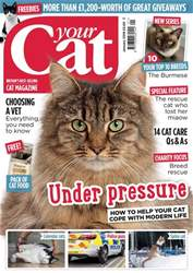 Your Cat issue Your  Cat Magazine January 2018