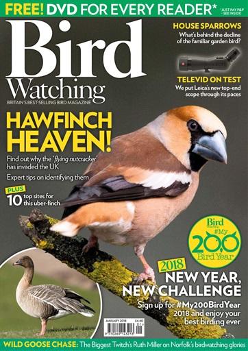 Bird Watching Preview