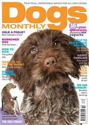 Dogs Monthly issue February 2018