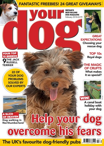 Your Dog issue Your Dog Magazine February 2018
