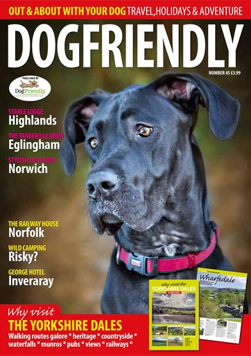 Dog Friendly Digital Issue