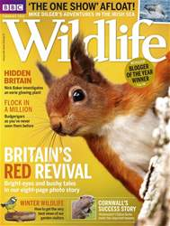 BBC Wildlife Magazine issue February 2018